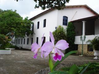 orquideas-na-cja-14.JPG
