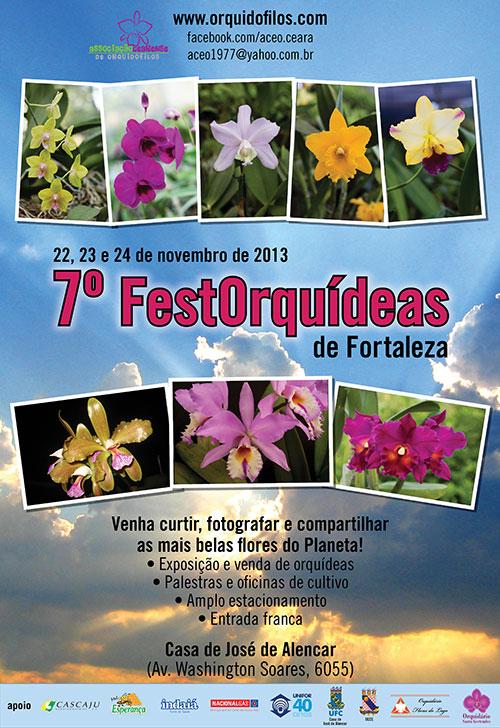 Cartaz FestOrquídeas 2013