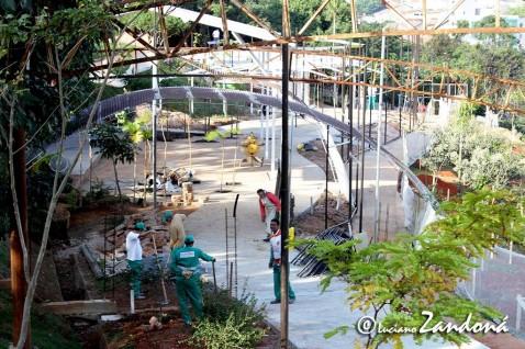 Orquidário de Guarulhos 06
