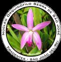 Logo-nossj