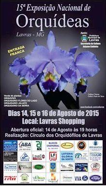 Cartaz - Lavras 2015