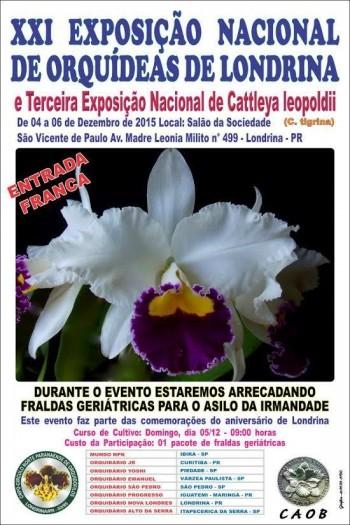 Exposição Nacional de Orquídeas de Londrina 2015