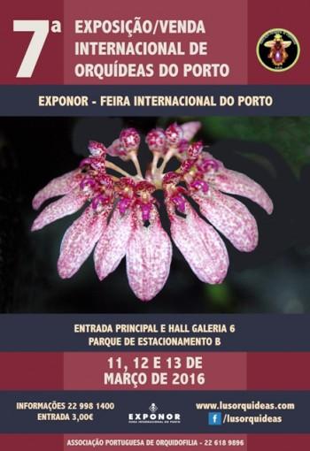 Exposição Orquídeas do Porto