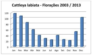 Florações labiatas 2003 - 2013