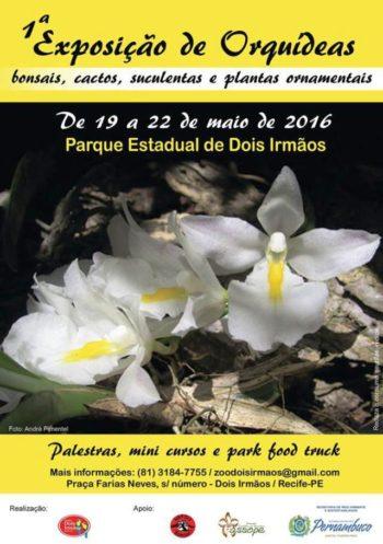 Cartaz - Parque Dois Irmãos 2016