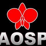 Logo AOSP