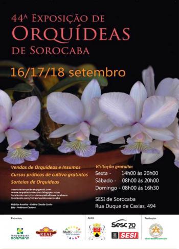 cartaz-sorocaba-2016