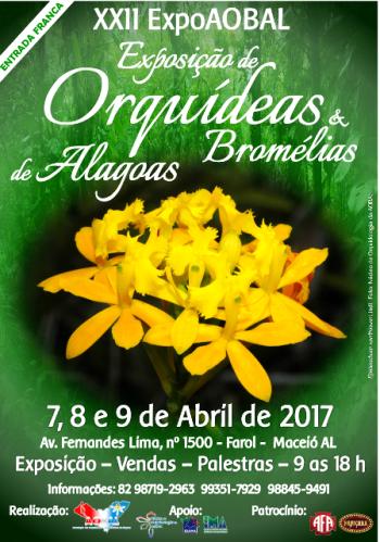 Exposição de orquídeas em Maceió
