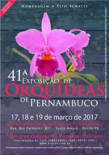 Exposição de orquídeas no Recife