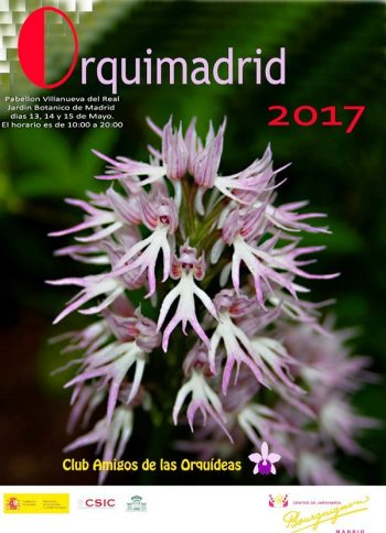 Orquimadrid 2017