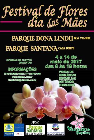 Orquídeas - Recife